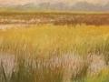 Drents-landschap-2012
