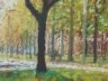 Singel-voorjaar-200-x-40-cm-klein