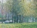 singel-voorjaar-1